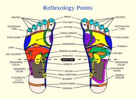 Reflexology points on the feet
